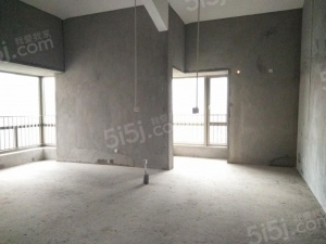 东盟商务区 顶层毛坯 挑高 客厅带阁楼 小户型高得房率