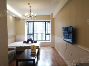 成都城南高档公寓